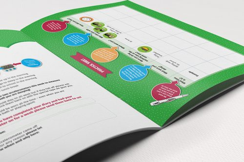 Print graphic design by Two Sparrows for GUiNZ resource